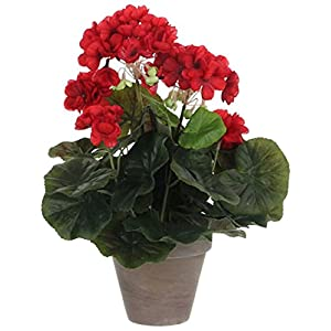 MICA Decorations 975161 Flores, Geranium Grandes, Color Rojo