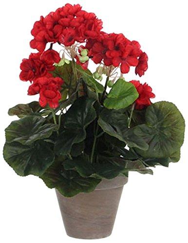 MICA Decorations 975161 Blumen, Geranium großen, rot