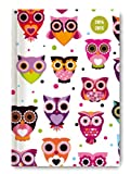 Collegetimer Pocket Owls 2014/2015 - Schülerkalender A6 - Day By Day - 352 Seiten