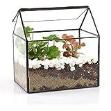 House Shape Close Glass Geometric Terrariumn Tabletop Succulent Plant Box Planter Moss Fern with Swing Lid