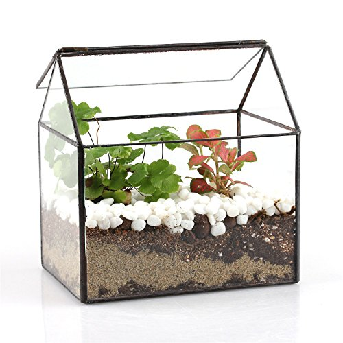 house-shape-close-glass-geometric-terrariumn-tabletop-succulent-plant-box-planter-moss-fern-with-swi