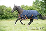 Gallop Trojan 100gsm Lightly Padded Standard Horse Pony Turnout Rug 6ft0in
