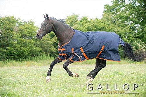 Gallop Trojan - Manta de caballo sin cuello, 100g - EU 140cm