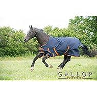 Bluee Nebular 69 Shires Tempest Original 100g Horse Outdoor Turnout Rug in Blue Nebular 59