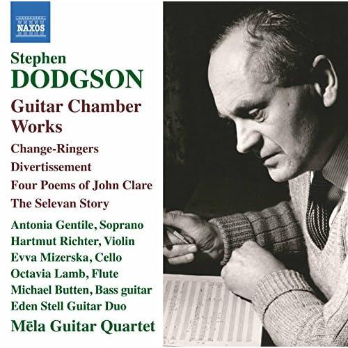 Dodgson: Guitar Chamber Works