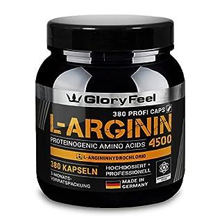 L-Arginin Aminosäure Kapseln Hochdosiert - Der PREIS-LEISTUNGSSIEGER 2018* - 380 Kapseln 4500mg L-Arginin HCL (3750mg L-Arginin) pro Tagesdosis - Ohne Magnesiumstearate hergestellt in Deutschland