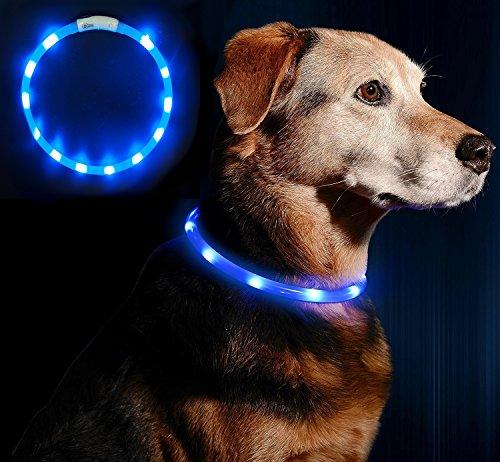 LED Leuchthalsband Hunde Halsband - Anicoll USB wiederaufladbar - Längenverstellbarer Haustier Sicherheit Kragen für Hunde und Katzen- 3 Modus 12 Lichte (blau) (Usb Aufladbare Led-hundehalsband)