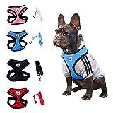 Shangwelluk Correa Cinturón de Seguridad del Coche para Mascota - retráctil Elasticidad Tela de Nylon Reflectante - para Gato Perros de formación, a pie y los Viajes en Coche