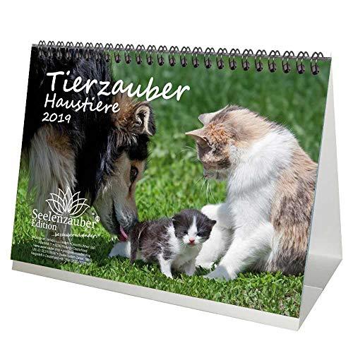 Tierzauber Haustiere · DIN A5 Premium Kalender/Tischkalender 2019 · Wellensittich · Hunde · Katze · Papagei · Kaninchen · Natur · Tiere · Set: 1 Grußkarte & 1 Weihnachtskarte · Edition Seelenzauber