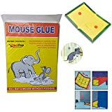 Mice Insect Rodent Lizard Trap Rat Catcher Adhesive Sticky Glue Pad (Mouse Glue Pad) - Non Poisonous - Non Toxic - Odourless - Rat Terminator (set of 1) | Mouse trap glue | Mouse repellent for home | Mouse trap for big rats | Mouse kill glue| Mouse kill trap |