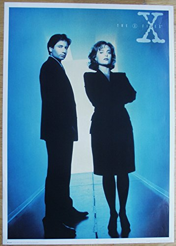 the-x-files-akte-x-poster-nr-2-format-64-x-90-cm