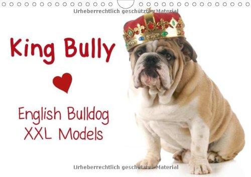 "King Bully • English Bulldog / XXL Models (Wandkalender 2014 DIN A4 quer): Starke Models in ""High Fashion""! (Monatskalender, 14 Seiten)"