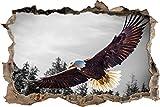 Pixxprint 3D_WD_5278_92x62 großer fliegender Adler Wanddurchbruch 3D Wandtattoo, Vinyl, schwarz / weiß, 92 x 62 x 0,02