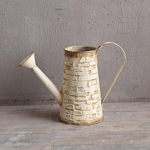 WAZY Flower Pot Flower Seau American Style Village Vase en fer Arrosoir Creative Creative Green Pots de plantes Artisanat Décoration, 5.5 * 5.5 * 9.6 pouces (Couleur : Blanc)