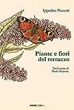 Piante e fiori del terrazzo