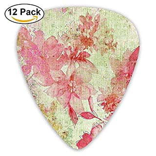 Floral Design With A Grunge Style Dated Background Retro Kitsch Artisan Print Guitar Picks 12/Pack Set