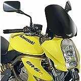 Cúpula Moto Kawasaki ER-6n 05-08 Givi teñida + Kit de montaje