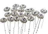 Newstarfactory Blingbling U-sharped Metal Hair Pins Pack of 20 with Exclusive Gift