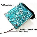Amplificatore per auto da 220 V Amplificatore Hi-Fi Amplificatore di potenza per auto (Colore: nero)