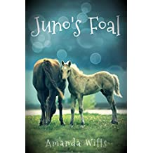 Juno's Foal (English Edition)
