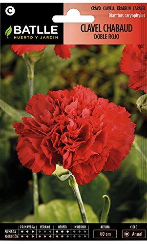 Semillas de Flores - Clavel Chabaud Doble rojo - Batlle