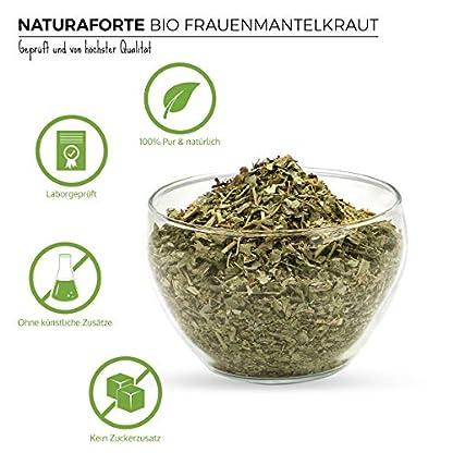NaturaForte-Bio-Frauenmantelkraut-Tee-geschnitten-250g-Frauenmantel-Tee-Alchemilla-Krutertee-Lose-im-Beutel-Abgefllt-und-kontrolliert-in-Deutschland-DE-KO-003