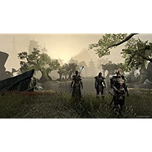 Bethesda The Elder Scrolls Online: Tamriel Unlimited, PC Basic PC German video game - video games (PC, PC, MMORPG, Multiplayer mode)