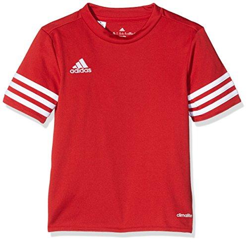 adidas Entrada 14 JSY, Camisa deportiva para hombre, Rojo (University