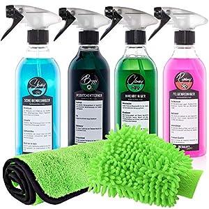 Detailify Autopflegeset Taily All in One Autoreinigungsset Autowaschset Innenreiniger Außenpflege Felgenreiniger Insektenentferner Waschhandschuh Lack Detailing Set