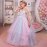 Peggy Gu Traje de Cosplay Princesa Sling Rainbow para niños Floral Fluffy Girl Stage Vestido de Novia Flower Girl Qi Dress Fiesta Elegante (tamaño : 4-5T)
