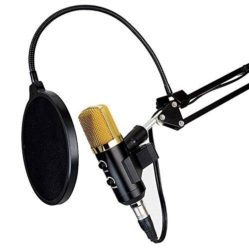 Mejores Micrófonos Para Youtubers Guía De Compra 2021