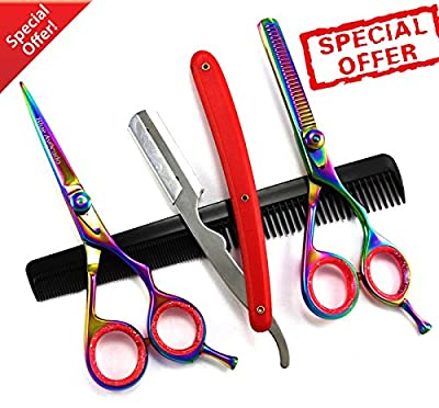Professional Salon Hair Cutting+Thinning Scissors Barber Shears Hairdressing Set Hair Tools With Barber Shavette from Blue Avocado