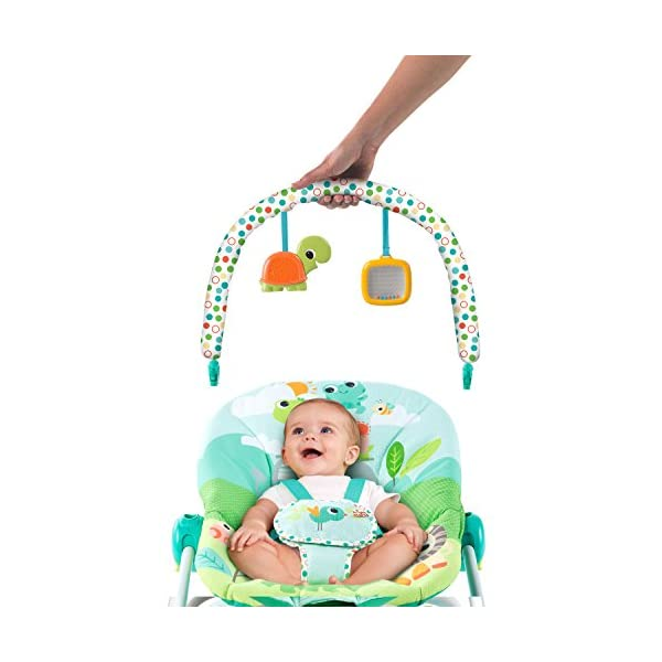 Bright Starts Playful Parade Baby to Big Kid Rocker Bright-Starts Seat can rock back and forth to soothe, or can be set to a fixed position for small babies and older toddlers Full body recline with 2 positions Soothing vibrations 12