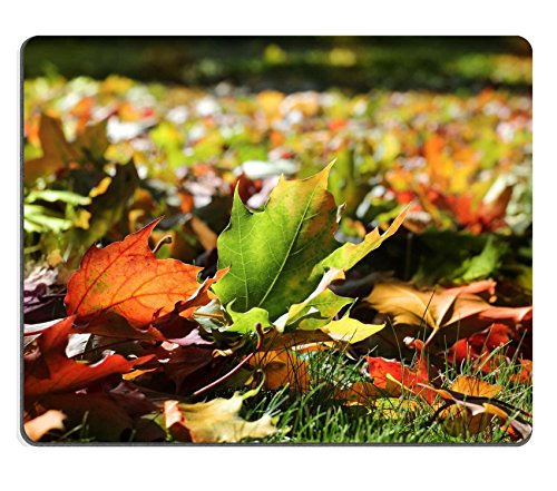liili-alfombrilla-de-raton-de-goma-natural-alfombrilla-de-raton-colorido-de-otono-hojas-de-arce-en-s