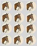 12 Pferd Pony braun reispapier fee / becher kuchen 40mm cake topper vorschnitt deko