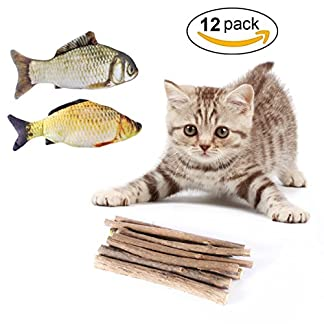 AIEVE Catnip Sticks for Cats,10 Pack Matatabi Cat Chew Sticks Teeth Grinding Chew Toys Cat Molar Toothpaste Stick for Teeth Cleaning with 2 Pack Catnip Fish Toys for Cats Kitten Kitty Pets(12 Pack) AIEVE Catnip Sticks for Cats,10 Pack Matatabi Cat Chew Sticks Teeth Grinding Chew Toys Cat Molar Toothpaste Stick for Teeth Cleaning with 2 Pack Catnip Fish Toys for Cats Kitten Kitty Pets(12 Pack) 51IDtSXt oL