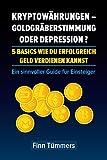 Kryptowährungen – Goldgräberstimmung oder Depression ? 5 Basics wie du erfolgreich Geld verdienen kannst: Ein sinnvoller Guide für Einsteiger
