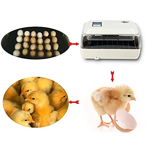 Iglobalbuy 24 Digital Chicken Egg Incubator Hatcher Supply Fully Automatic Egg Turning Temperature