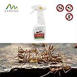 Gardigo Anti Ungeziefer Spray 250 ml mit dem Extrakt aus Mutterkraut, Ungezieferspray, Schädlingsfrei, Ameisenspray, Ameisenmittel, Silberfische