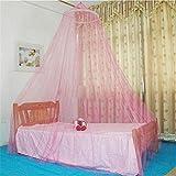 Z&HAO Elegante Klassische Prinzessin Studenten Outdoor Hang Dome Moskitonetze Für Mädchen Rundspitze Insekten Betthimmel Netting Vorhänge,Pink,250*900*60Cm