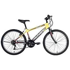 F.LLI Schiano Mountain Bike Power Antracite/Giallo 26''