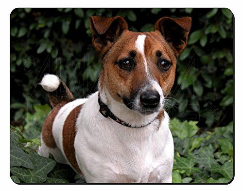 jack-russell-terrier-dog-computer-mouse-mat-christmas-gift-idea