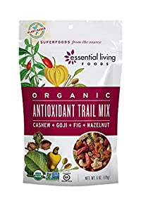 Essential Living Foods - Organic Antioxidant Trail Mix Cashew + Goji Fig 178373