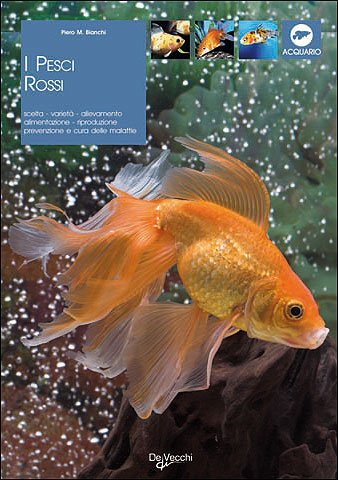 I pesci rossi