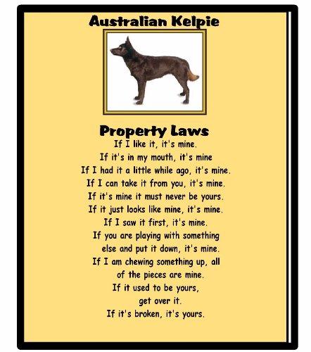 magnetsandhangers Australian Kelpie – Property Laws – Mouse mat