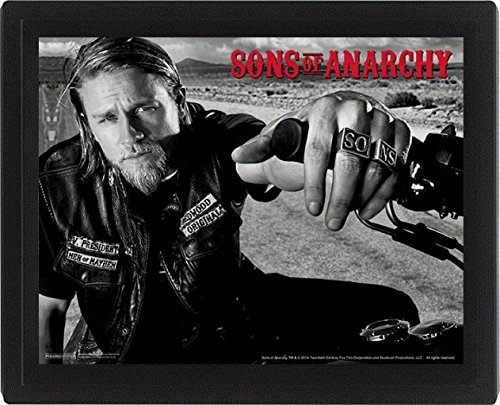 "Sons Of Anarchy 10 x 20,32 cm ""Jackson"" 3D poster incorniciato, multicolore"