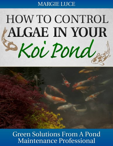how-to-control-algae-in-your-koi-pond-english-edition