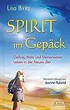 Spirit im Gepäck. Delfine, Wale und Sternenwesen - Leben in der Neuen Zeit - Lisa Biritz