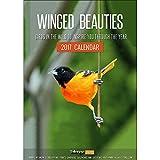 #9: Winged Beauties - Birds Wall Calendar 2017 By Tallenge