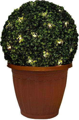 Funktion, 35cm, beleuchtet, Buchsbaum, Formschnitt, Kugel pot-solar, planter-new -